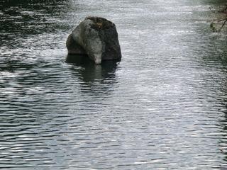 像岩・彼岸花 007.jpg