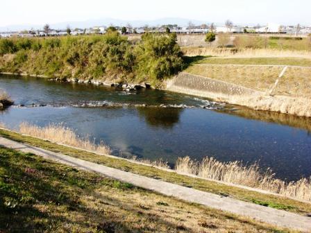 公園の川2.JPG