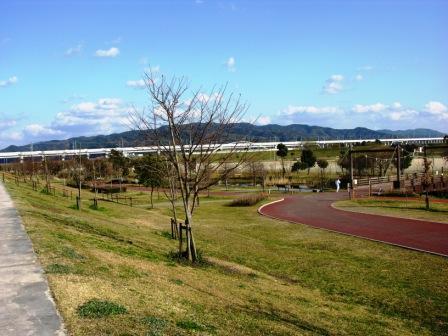 広域公園4.JPG