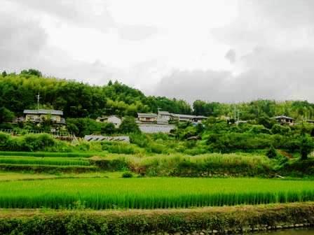 kuriyama1.JPG
